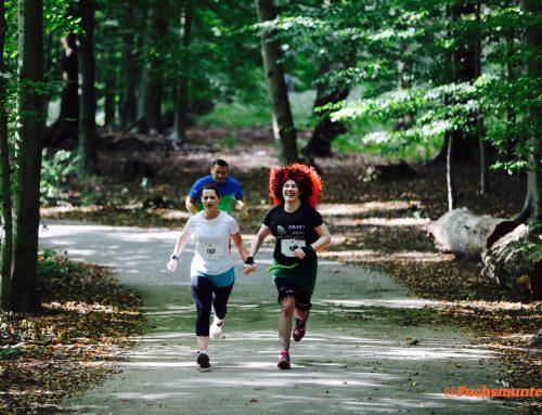 Warum Flitzekacke nicht das hält, was sie verspricht!       Mein erster Halbmarathon – Ein Erfahrungsbericht.