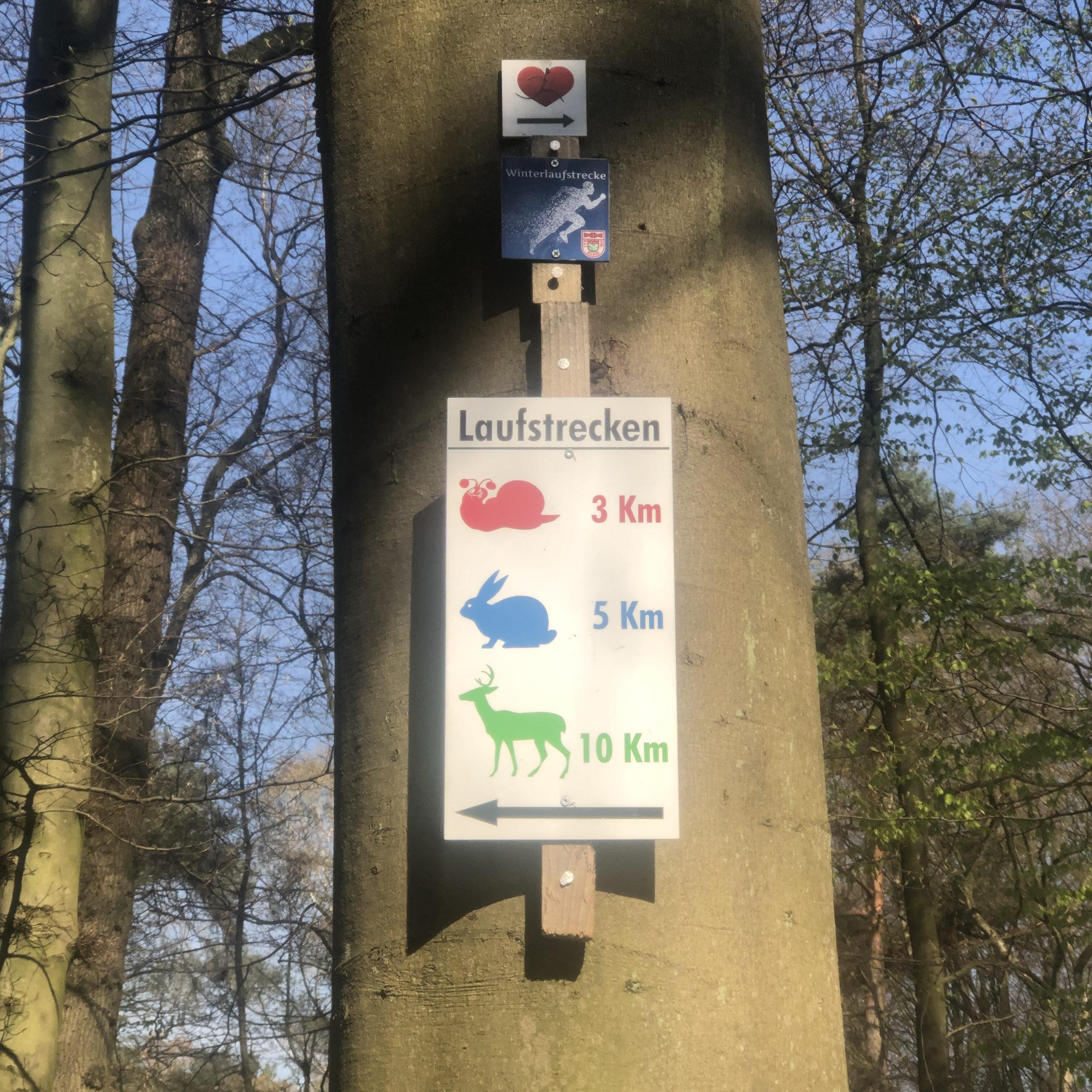 Die Laufstrecken im Hildener Stadtwald Laufen fuer Einsteiger mit Sonja Fuchs Fuchsmunter