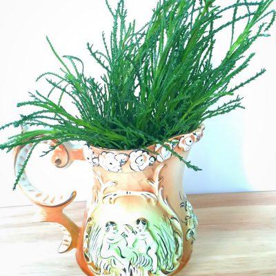 Olivenkraut im dekorativen Kännchen