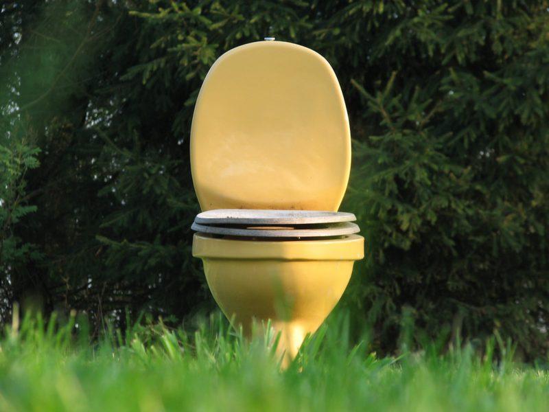 Toilette im Grünen